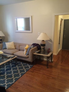 Astoria Two Bedroom 27th Street Living Room 2